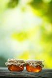 Pots de miel dans de style eco images stock