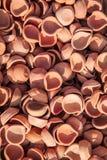 Pots de terre Images stock
