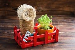 Pots de tourbe, fil rugueux, râteau et pousses vertes dans la boîte rouge Atterrissage de jeune plante Image stock