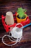 Pots de tourbe, fil rugueux, râteau et pousses vertes dans la boîte rouge Atterrissage de jeune plante Images libres de droits