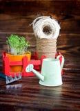 Pots de tourbe, fil rugueux, râteau et pousses vertes dans la boîte rouge Atterrissage de jeune plante Photos stock