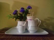 Pots et fleurs de thé photographie stock