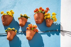 Pots et milieux de fleur Images stock