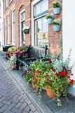 Pots with flowering plants in a Dutch street Royalty Free Stock Photography