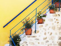 Pots with flowers on stairs. royalty free stock photo
