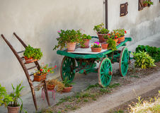 Pots with flowers on wooden cart in Italy. Royalty Free Stock Photography