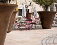 Pots géants d'olivier à Marseille, franc Image libre de droits
