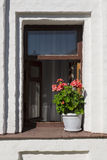 Pots of geraniums on the window of an old house Royalty Free Stock Photo