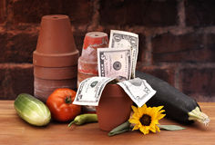 Pots with growing money. On brick and wood table Royalty Free Stock Photography