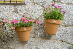 Pots hanging on the wall with flowers in the city of Valldemosa stock image