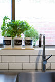 Pots of herbs on contemporary kitchen window sill vertical Royalty Free Stock Photography