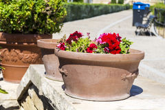 Pots with red  petunia flowers for street decoration in Spain Stock Images