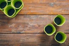 Pots vides de jeune plante sur le fond en bois brun photographie stock