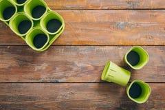 Pots vides de jeune plante sur le fond en bois brun image stock