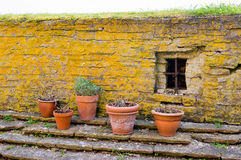 Pots by wall Royalty Free Stock Image