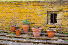 Pots by a wall stock photo