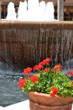Pots of Water and Flowers Royalty Free Stock Images