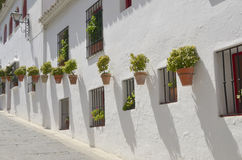 Pots on white houses Stock Photos