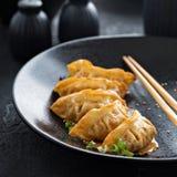 Potstickers frits aux oignons verts photo libre de droits