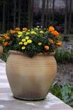 Potted цветки Стоковое Фото