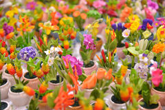Potted Artificial Flowers Royalty Free Stock Images