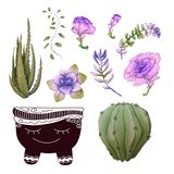 Potted cacti and succulents plants badge collection set. stock image