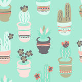 Potted Cactus Pattern. A bright and fun seamless cactus pattern with succulents, cacti and flowers. The plants are potted in decorated pots with a tribal Royalty Free Stock Images
