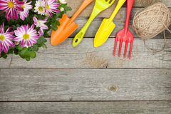 Potted flower and garden utensils Stock Images