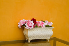 Potted flowers i Stock Photos