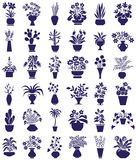 Potted flowers icons on white Stock Photos