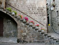 Potted flowers line the stairway of this medieval building in San Pellegrino section of Viterbo, Lazio, Italy. Colorful potted plants line the stairway of this Royalty Free Stock Images