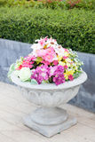 Potted flowers. With trees and flowers in pots. Is placed in the garden to decorate the garden Stock Photo