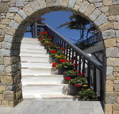 Potted flowers on a white stairs in Mykonos island. Greece Royalty Free Stock Images