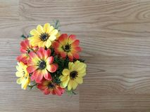 Potted flower is on wooden table stock photography