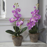 Potted pink artificial orchid on black table Royalty Free Stock Images