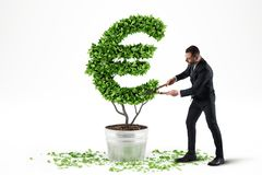 Potted plant with eur shape. 3D Rendering stock photography