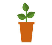 Potted plant icon with illustrated Stock Photos