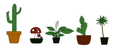 Potted Plant Illustration Stock Photos