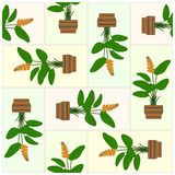 Potted Plant. Pattern. Royalty Free Stock Photography