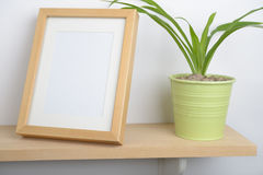 Potted plant on a shelf Royalty Free Stock Photos