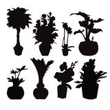 Potted plant silhouette collection Stock Photo