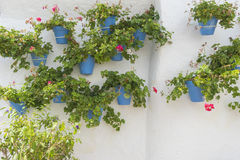 Potted Plants And Flowers On The Streets Of Marbella, Malaga Spa Stock Photography