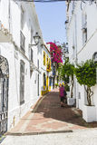 Potted plants and flowers on the streets of Marbella, Malaga Stock Images