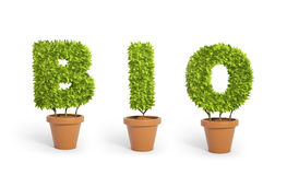 Potted plants forming the word bio Stock Images