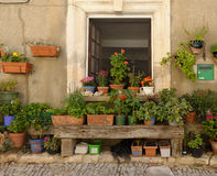 Potted plants by house in Provence Stock Photo