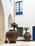 Potted Plants in an Italian Building's Court Yard Stock Photo