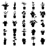 Potted plants silhouettes set Stock Photography