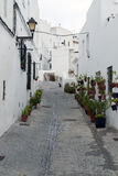 Potted plants in the street. Street decorated with white houses and potted plants in Their windows, a cat at the end of the street. It is Situated in a village Stock Images