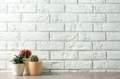 Potted plants on table near brick wall, space for text. Interior decor stock image