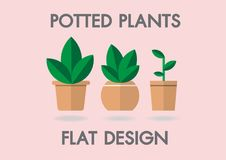 Potted Plants Vector flat house illustration. Colorful house for your design on pink backgound. Potted Plants Vector flat house illustration. Colorful house for Royalty Free Stock Images